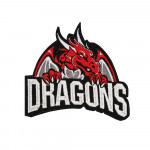 Dragon on Fire Embroidered Sew-on/ Iron-on / Velcro Patch